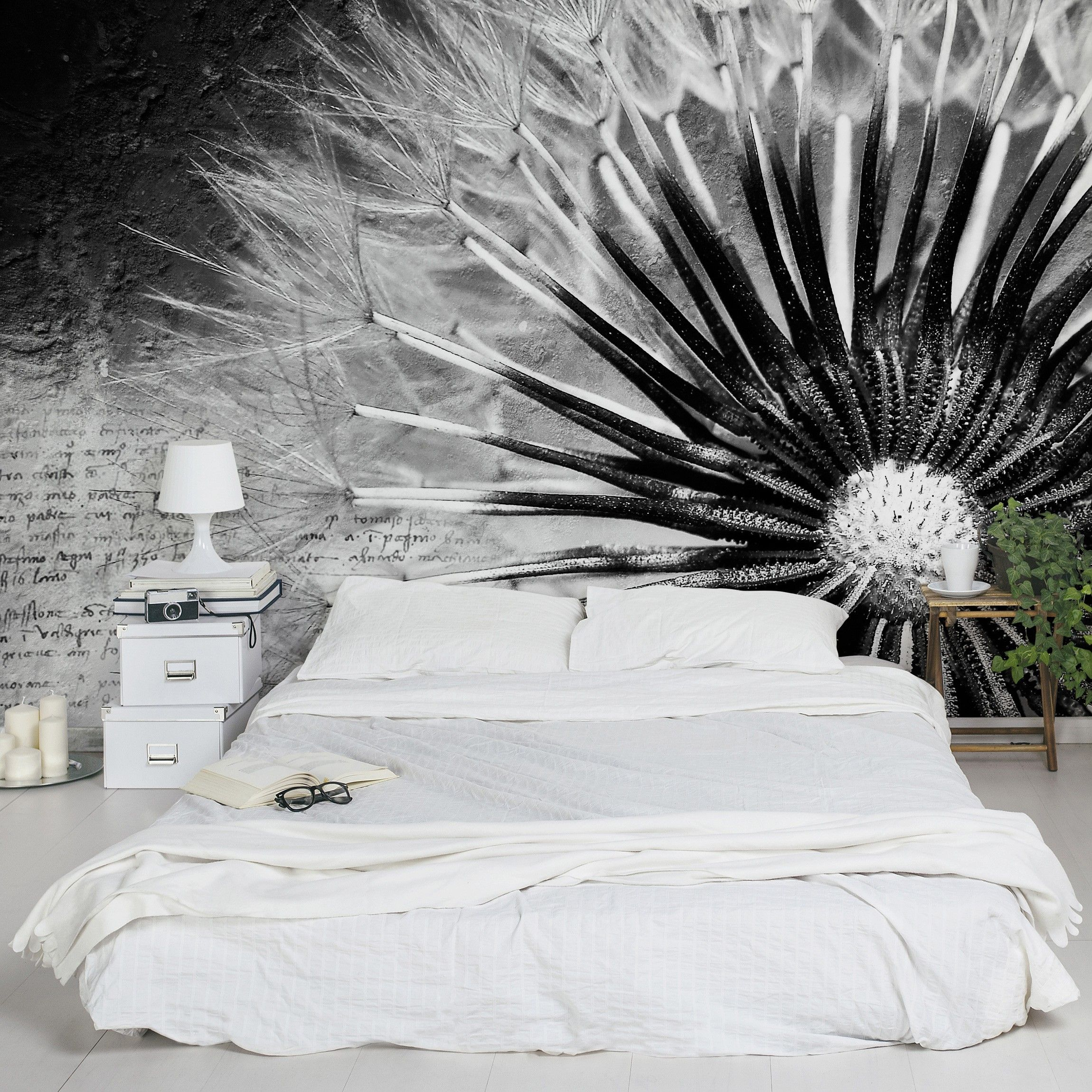 selbstklebende tapete pusteblume schwarz wei fototapete blumen tapete. Black Bedroom Furniture Sets. Home Design Ideas