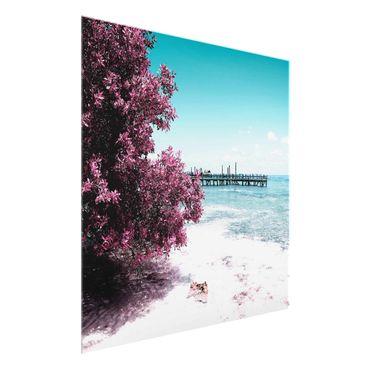 Glasbild - Paradies Strand Isla Mujeres - Quadrat 1:1