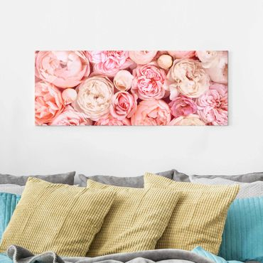 Glasbild - Rosen Rosé Koralle Shabby - Panorama