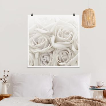 Poster - Weiße Rosen - Quadrat 1:1
