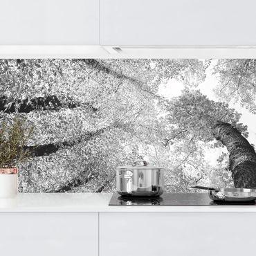 Küchenrückwand - Bäume des Lebens II