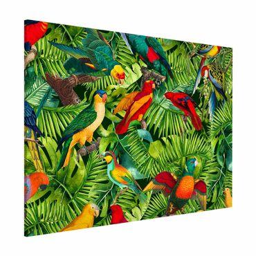 Magnettafel - Bunte Collage - Papageien im Dschungel - Memoboard Querformat 3:4