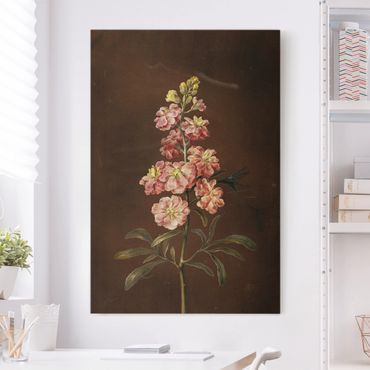 Leinwandbild - Barbara Regina Dietzsch - Eine rosa Garten-Levkkoje - Hochformat 3:2