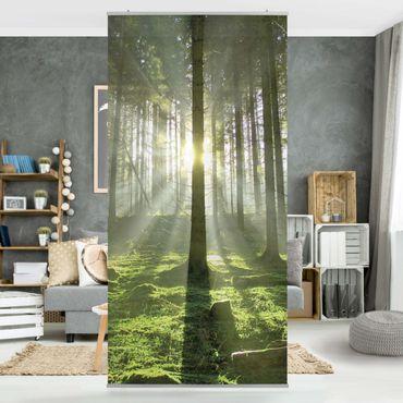 Raumteiler - Spring Fairytale 250x120cm