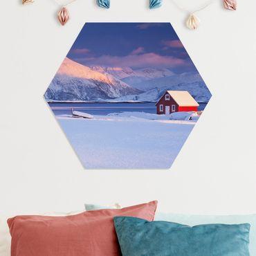 Hexagon Bild Forex - Santas House