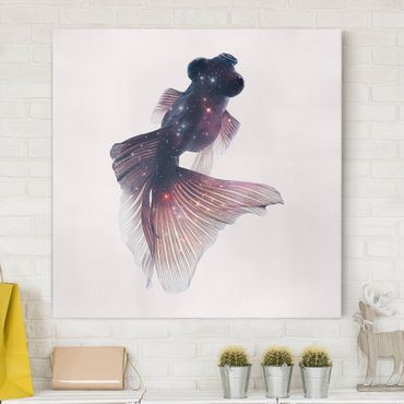 Leinwandbild - Jonas Loose - Fisch mit Galaxie - Quadrat 1:1