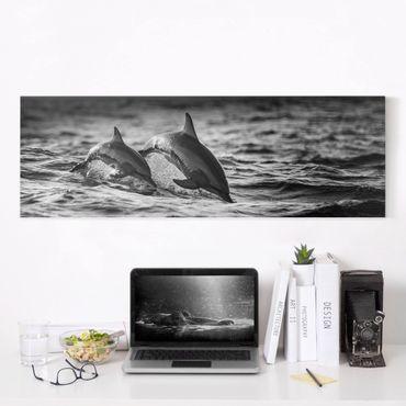 Leinwandbild - Zwei springende Delfine - Panorama 1:3