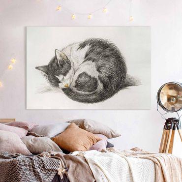 Leinwandbild - Vintage Zeichnung Katze II - Querformat 2:3
