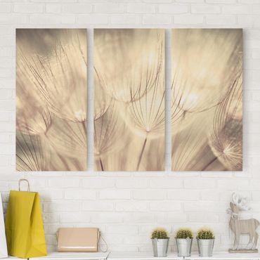 Leinwandbild 3-teilig - Pusteblumen Nahaufnahme in wohnlicher Sepia Tönung - Hoch 1:2