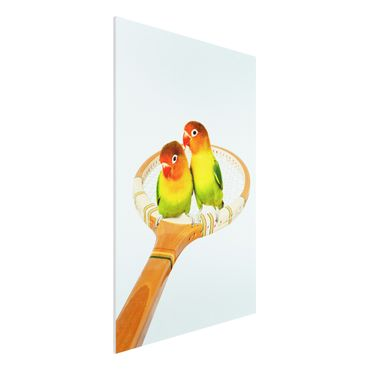Forex Fine Art Print - Jonas Loose - Tennis mit Vögeln - Hochformat 3:2