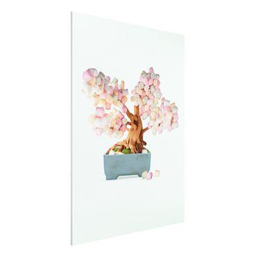 Forex Fine Art Print - Jonas Loose - Bonsai mit Marshmallows - Hochformat 4:3