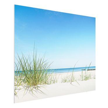 Forexbild - Ostseeküste