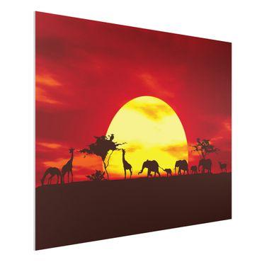 Forexbild - Sunset Caravan
