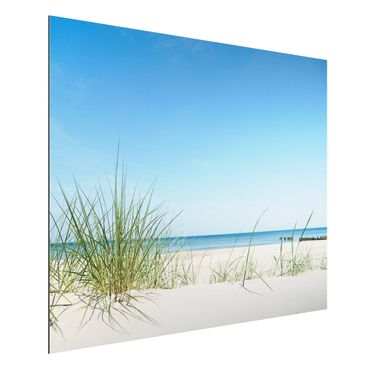 Alu-Dibond Bild - Ostseeküste