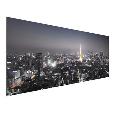 Alu-Dibond Bild - Tokio