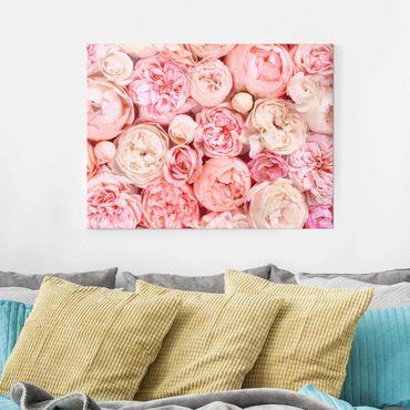 Glasbild - Rosen Rosé Koralle Shabby - Querformat 3:4