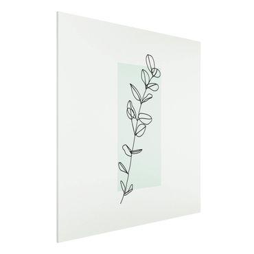 Forex Fine Art Print - Zweig Geometrie Viereck Line Art - Quadrat 1:1