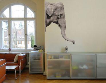Wandtattoo Elefant No.3 Elefant