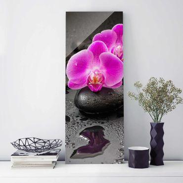 Glasbild - Pinke Orchideenblüten auf Steinen mit Tropfen - Hochformat