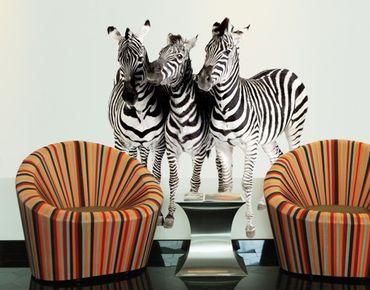 Wandtattoo No.142 Zebras