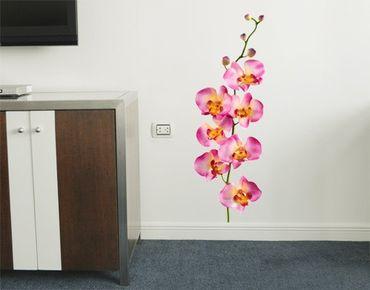 Wandtattoo Orchidee No.177 Orchidee Rosa II