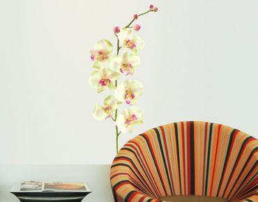 Wandtattoo Orchidee No.190 Orchidee Weiß II