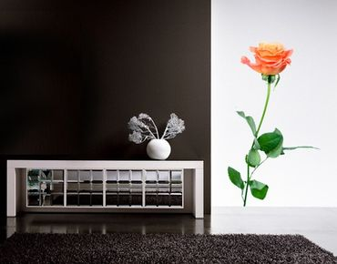 Wandtattoo Rose No.194 Rose Lachsfarben