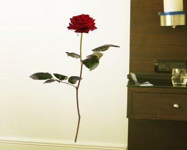 Wandtattoo Rose No.SB53 Rote Rose I