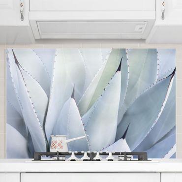 Spritzschutz Glas - Agavenblätter - Querformat - 3:2