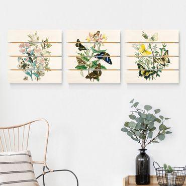Holzbild 3-teilig - Britische Schmetterlinge Set I - Quadrate 1:1