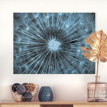 Leinwandbild - Blau getönte Pusteblume - Querformat 3:4