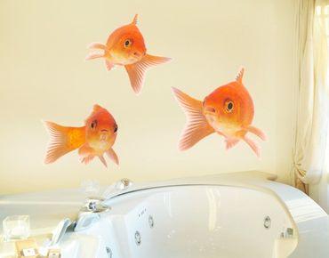 Wandtattoo No.255 Fisch Set 3-teilig