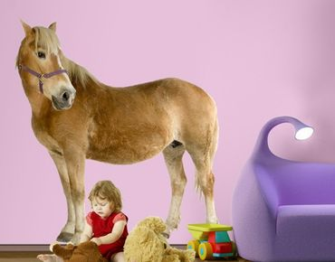 Wandtattoo Pferd No.308 Haflinger