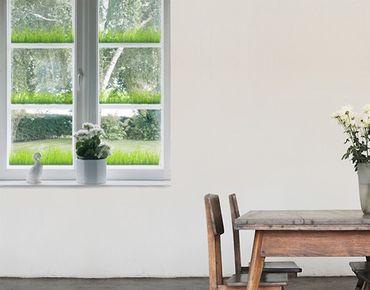Fensterfolie - Fenstersticker - No.328 Gras Set - Fensterbilder Frühling