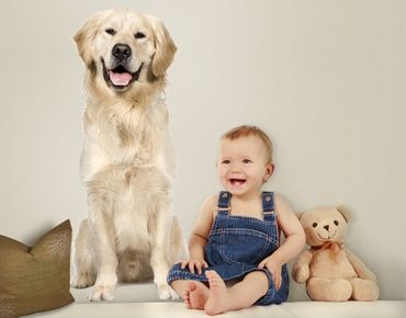 Wandtattoo Hund No.359 Golden Retriever