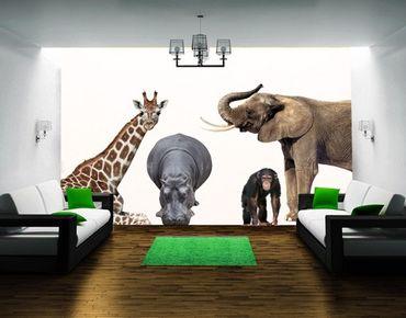 Wandtattoo Affe Elefant Giraffe No.406 African Safari Set
