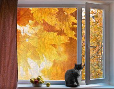Fensterfolie - Sichtschutz Fenster Autumn Leaves - Fensterbilder