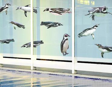 Fensterfolie - Fenstersticker No.391 Humboldt-Penguin Set - Fensterbilder