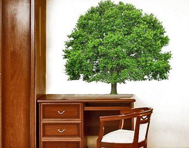 Wandtattoo Wald - Baum No.393 Sommerlinde