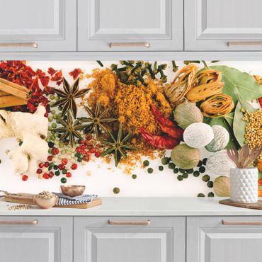 Küchenrückwand - Gewürze und getrocknete Kräuter