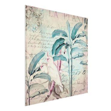 Forex Fine Art Print - Colonial Style Collage - Kakadus und Palmen - Quadrat 1:1