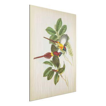 Aluminium Print gebürstet - Vintage Illustration Tropische Vögel III - Hochformat 4:3