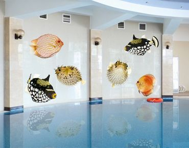 Wandtattoo No.618 Fisch Set