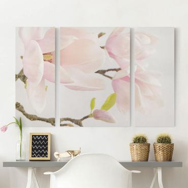 Leinwandbild 3-teilig - Royal Magnolia - Triptychon