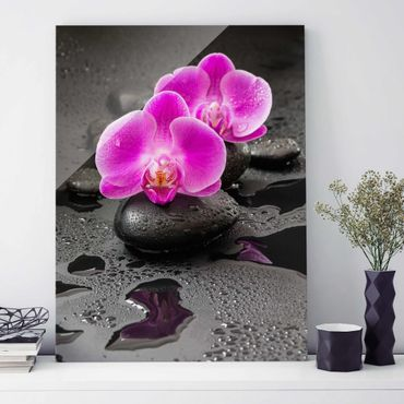 Glasbild - Pinke Orchideenblüten auf Steinen mit Tropfen - Hochformat 4:3