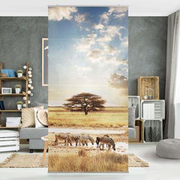 Raumteiler - Das Leben der Zebra 250x120cm