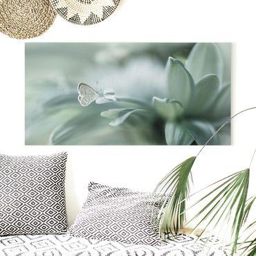 Leinwandbild - Schmetterling und Tautropfen in Pastellgrün - Querformat 1:2