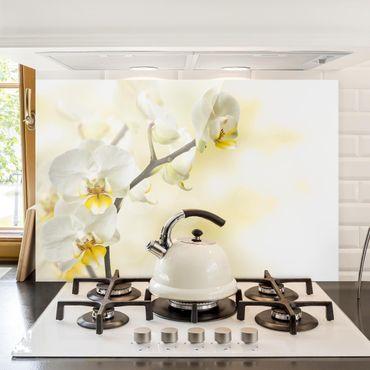 Spritzschutz Glas - Orchideen Zweig - Querformat - 3:2