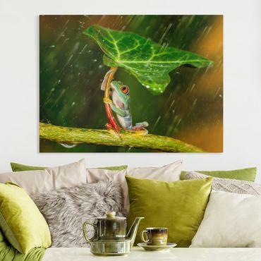 Leinwandbild - Ein Frosch im Regen - Querformat 3:4