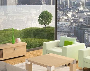 Fensterfolie - Sichtschutz Fenster Grüne Ruhe - Fensterbilder